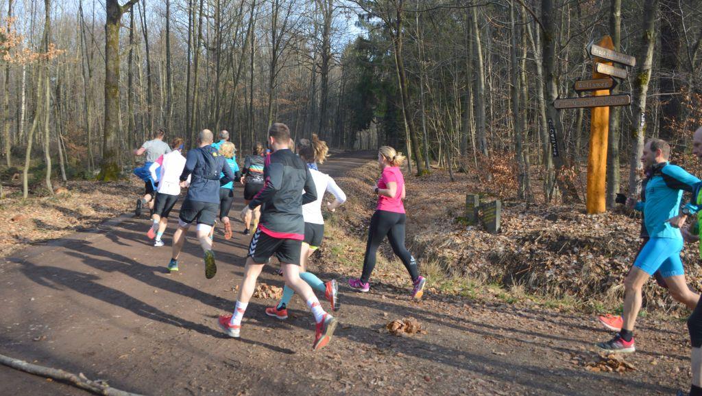 Köfo-M 2019 - TR-Lauf 17.02 - unterwegs 12
